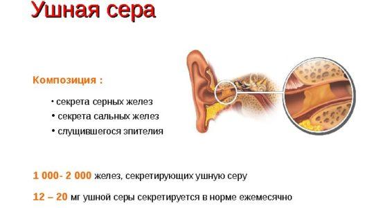 Из чего состоит ушная сера