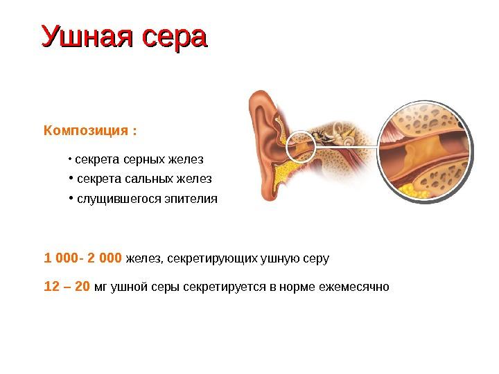Как выглядит ушная сера