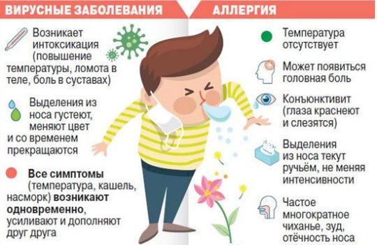 Как отличить симптомы аллергии от вирусного заболевания