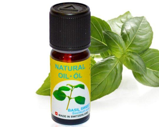 Масло или сок листьев базилика используют при лечении отита