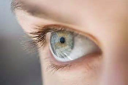 Вестибулярный анализатор имеет тесную связь с глазным нервом