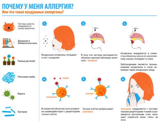 Причины аллергического зуда в горле и ушах