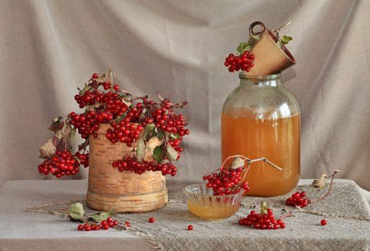 Компрессы с медом и калиной используют в народной медицине для улучшения слуха