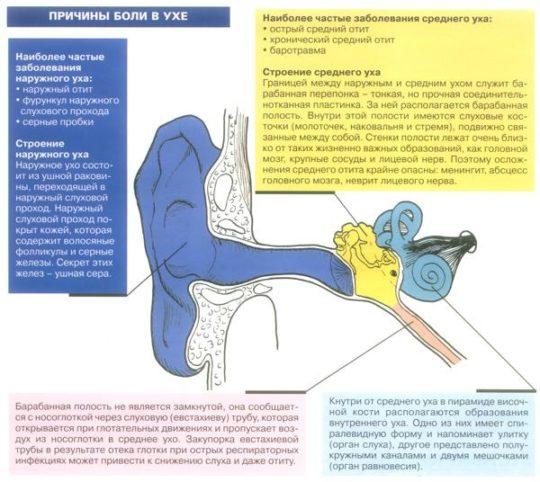 Возможные причины возникновения боли в ушах