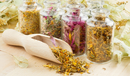 При лечении трещин используют травы
